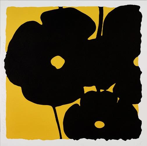 Reversal Poppies, Yellow and Black