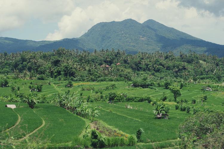 Amed Honeymoon Eco Travel Veganism Bali.jpg