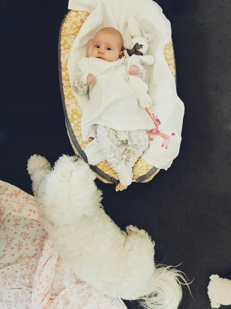 organic cotton baby clothes 08.jpg