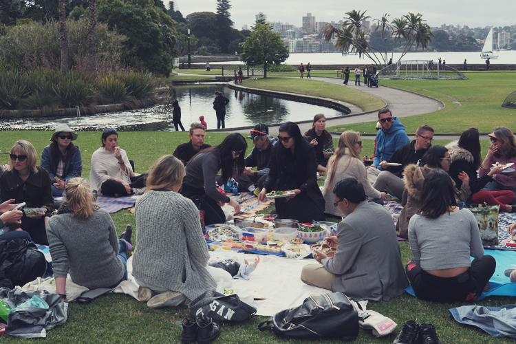 Sydney Vegan CLub Picninc Meetup.jpg