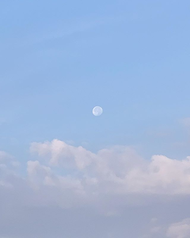 Monday Morning Moon 🌝