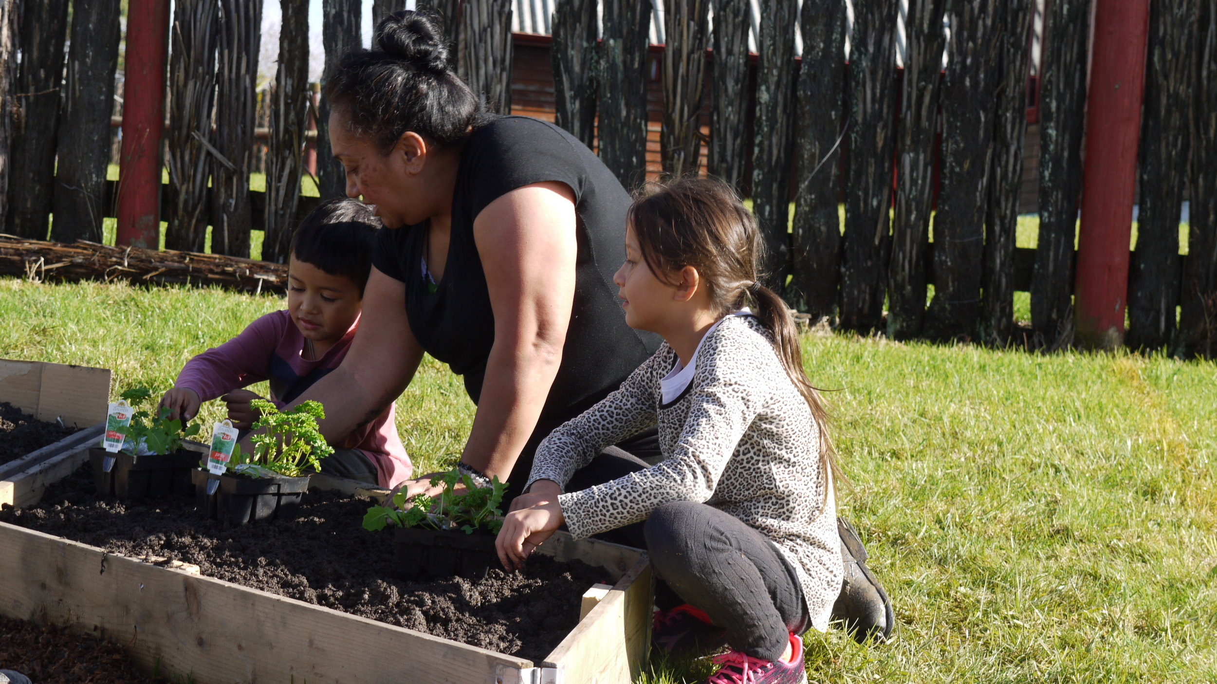 News - Stay up-to-date with what Healthy Families Waitākere have been doing the community. Read more