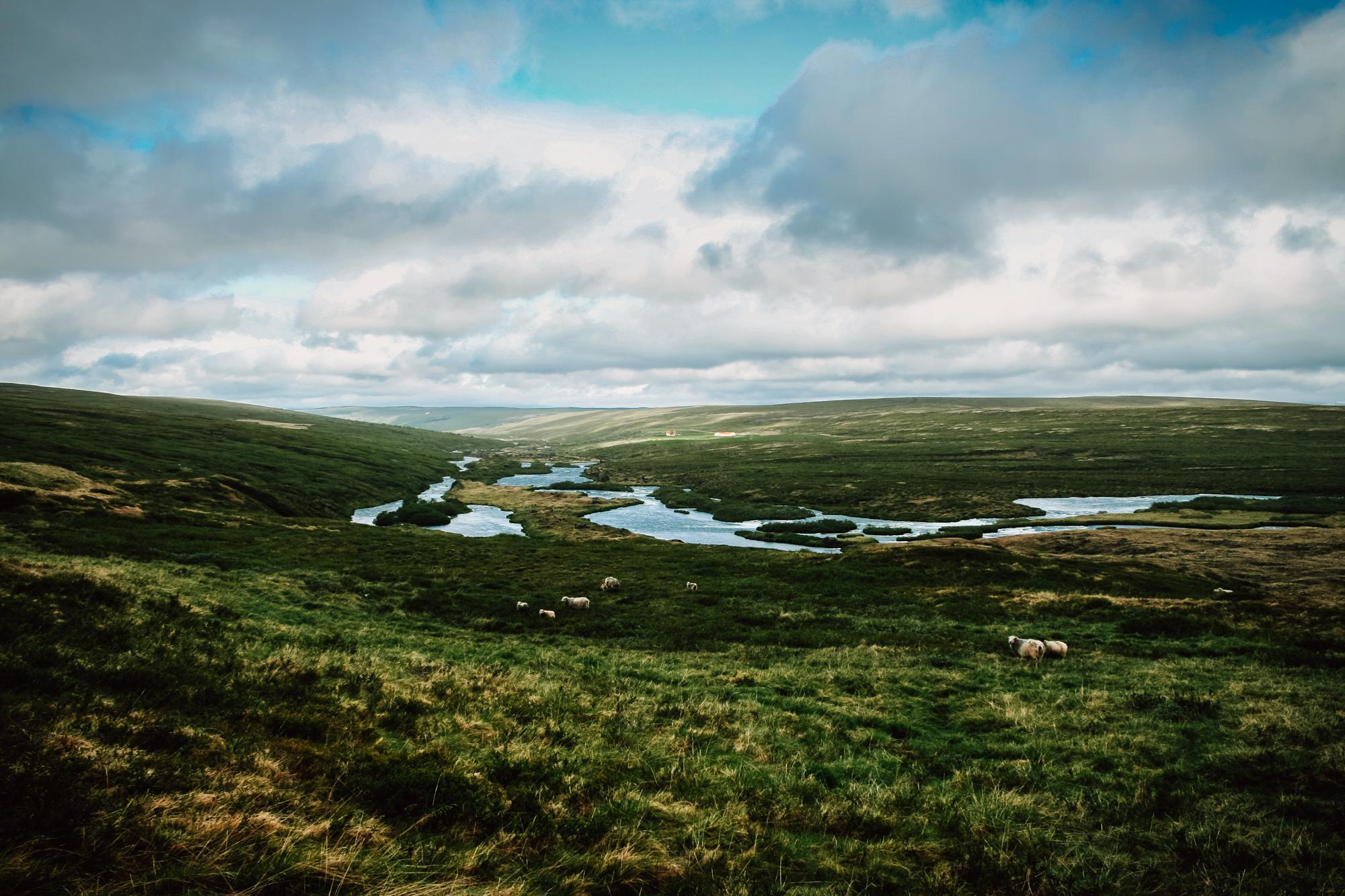 2016-06-28-Iceland-Web-033.jpg