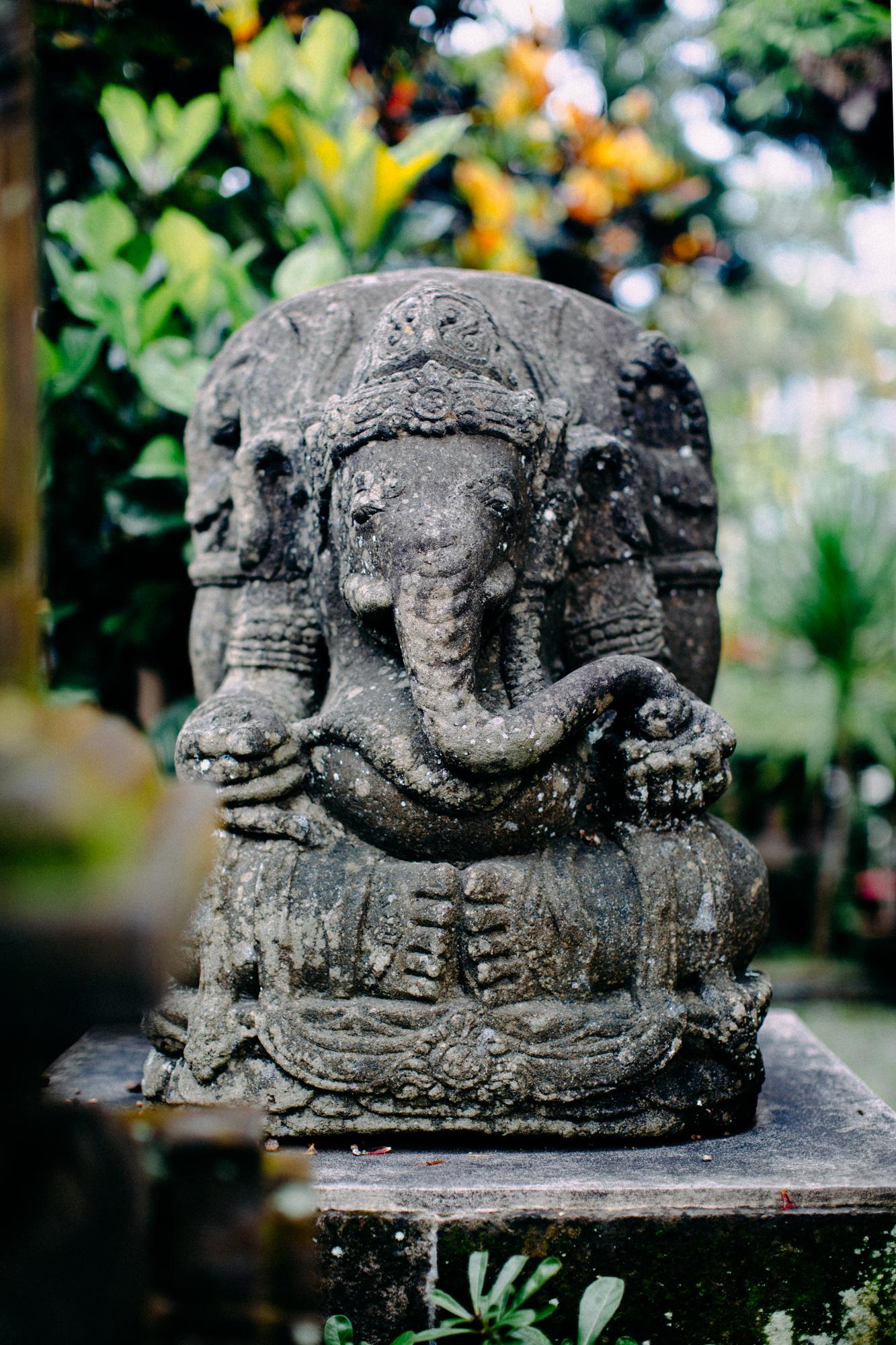 Bali-Travel-Web-54.jpg