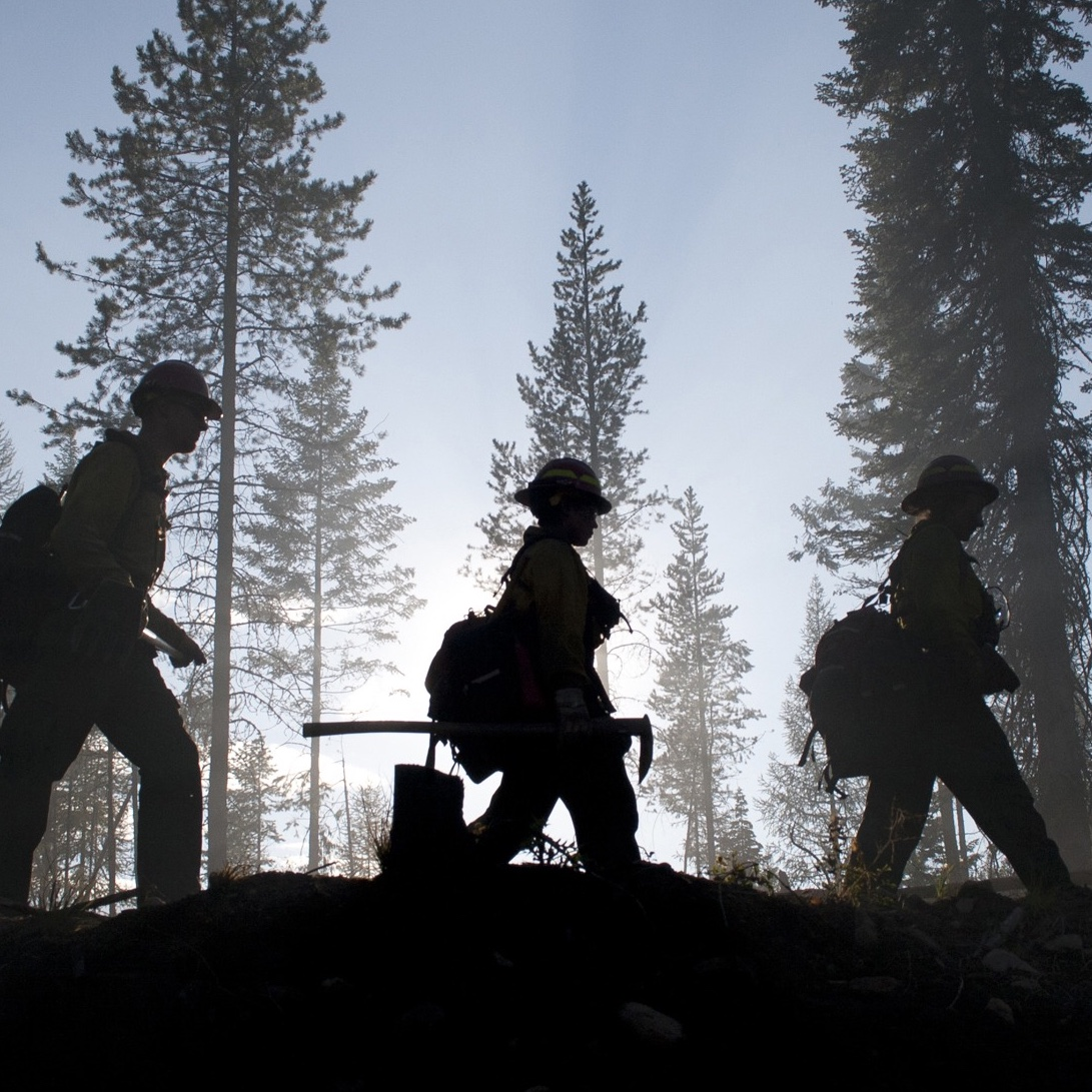 forest firefighters.jpg