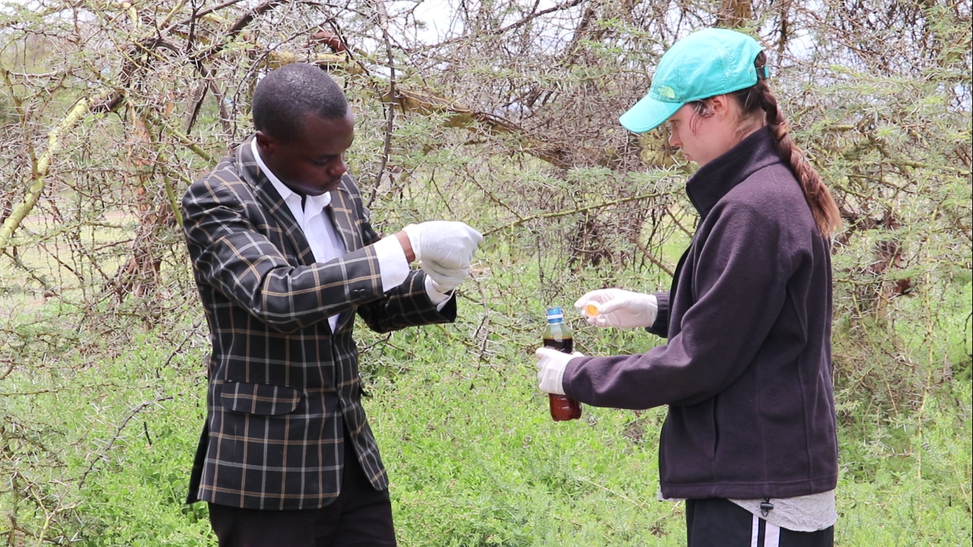 In collaboration with Wildlife direct, Gearbox built two prototypes to support the end of human – wildlife conflict, which were successfully tested during this period;