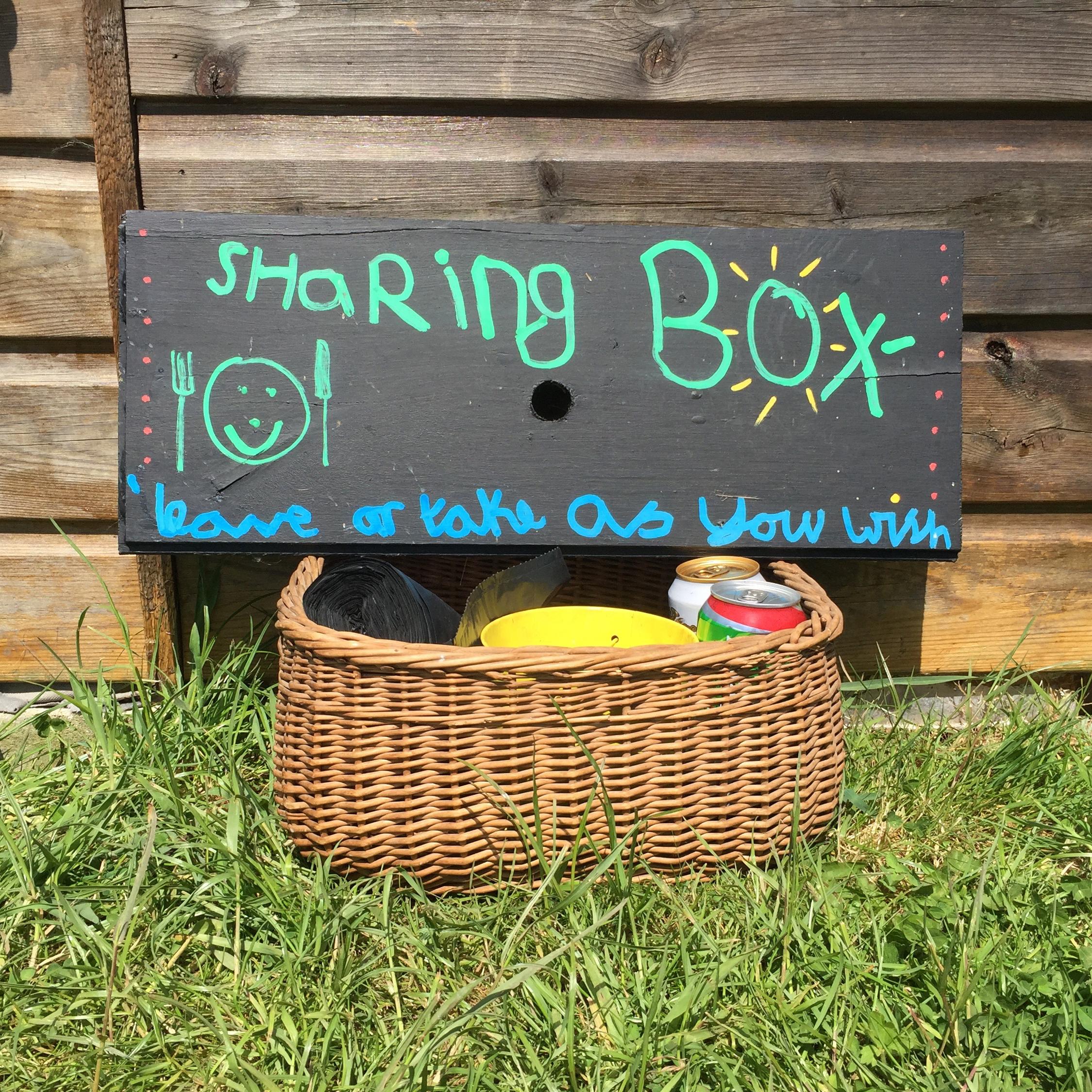 Camp Hartland share box.jpg