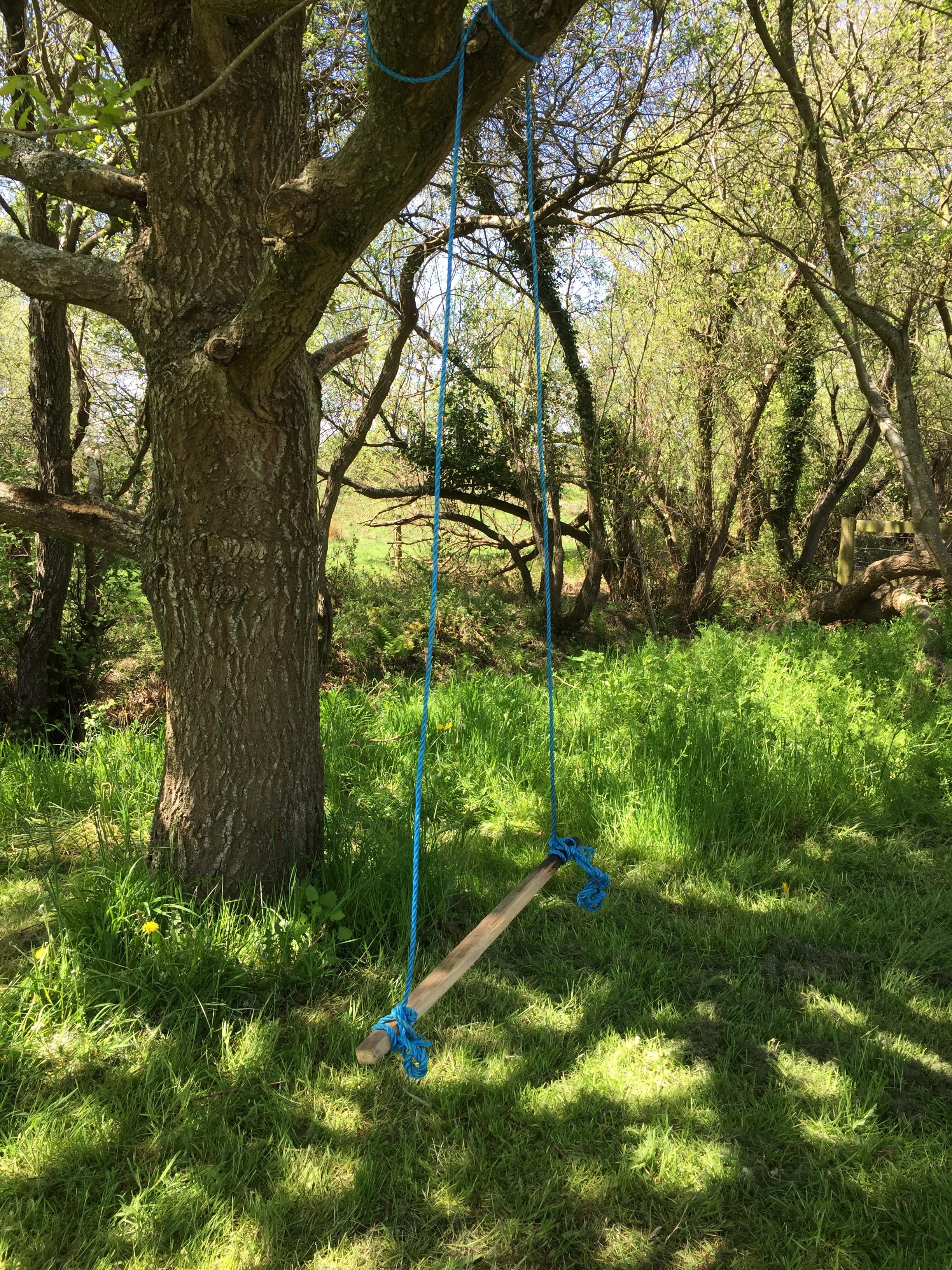 Camp hartland - rope swing.jpg