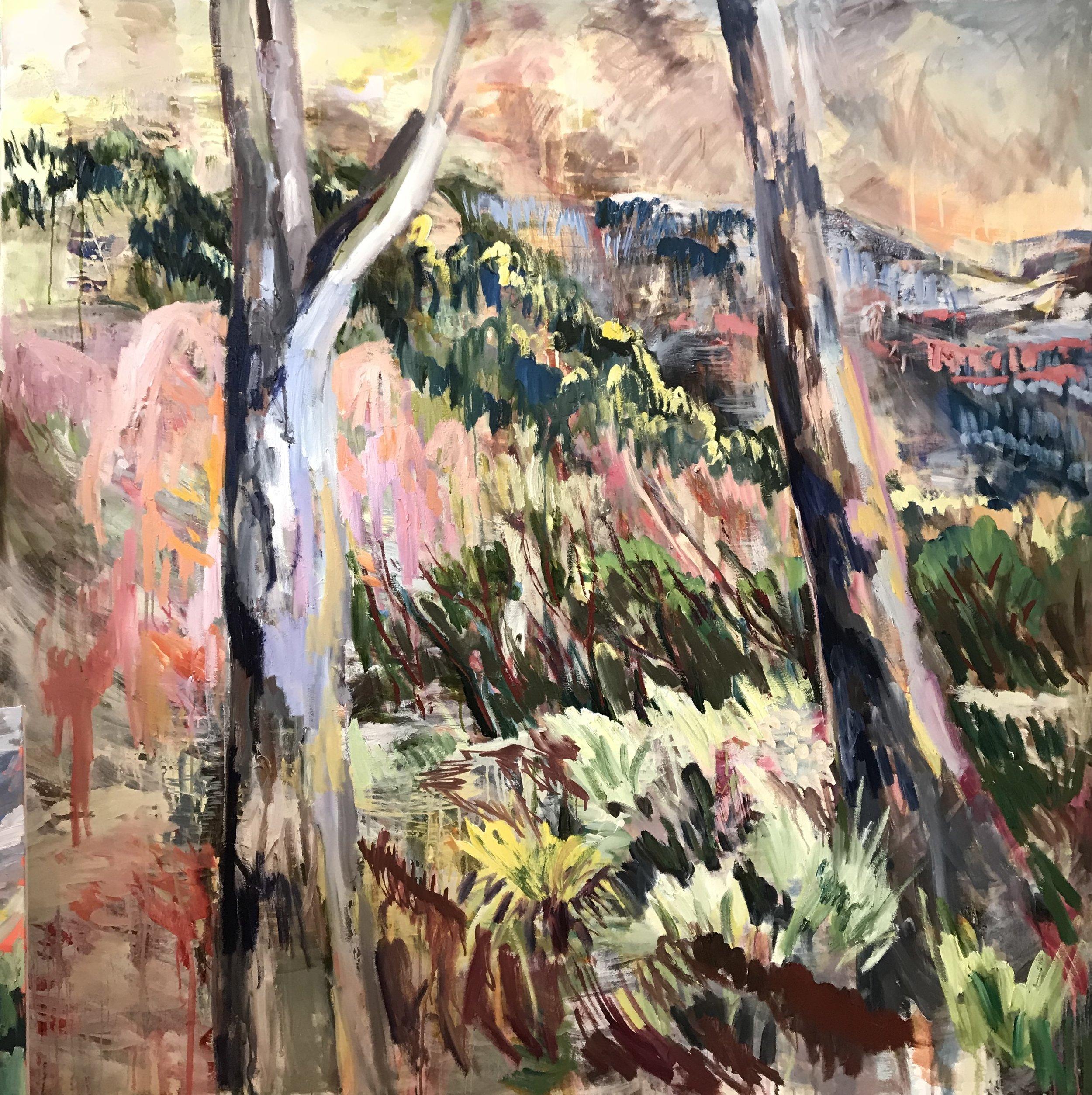 Katoomba Dreaming by Rachel Hannan