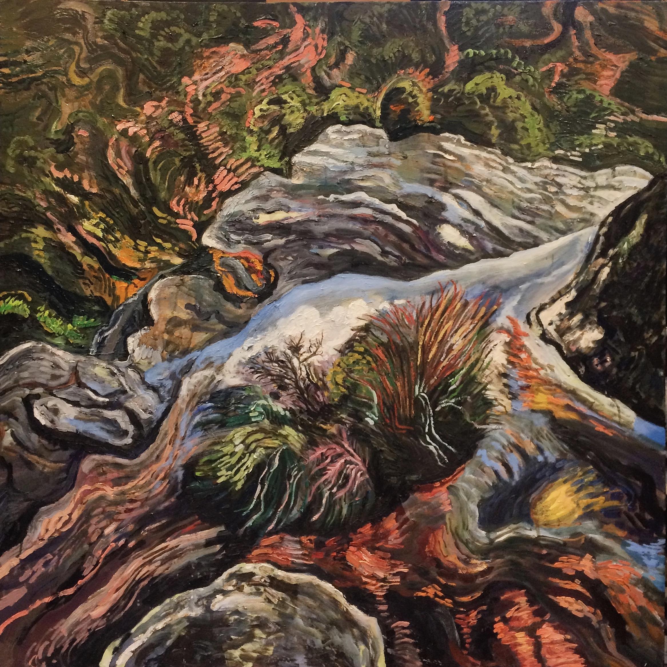 Mount Hay Rockpools by Rachel Hannan