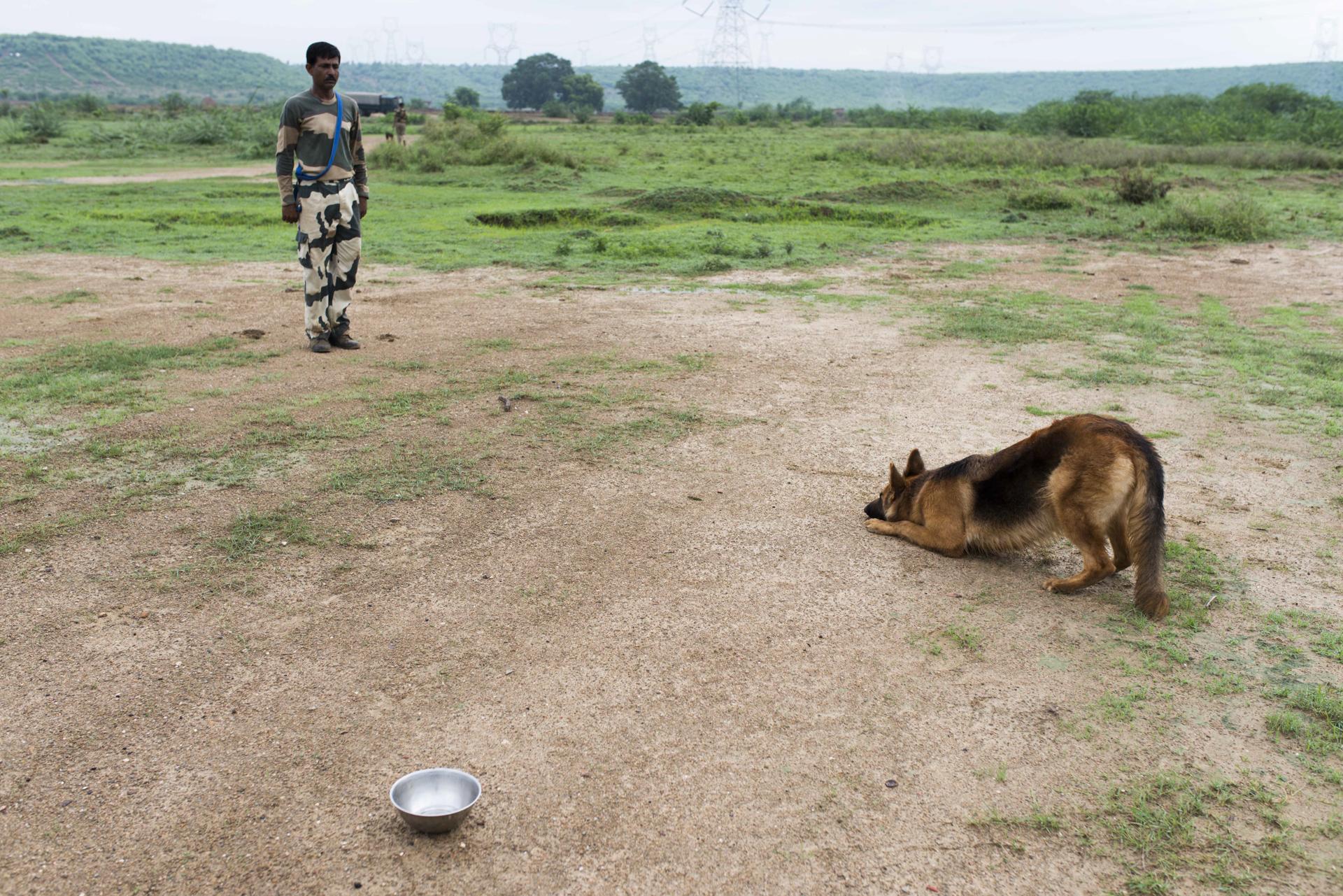 De_In_BSF_Tekanpur_NTCD_01082014-136.jpg