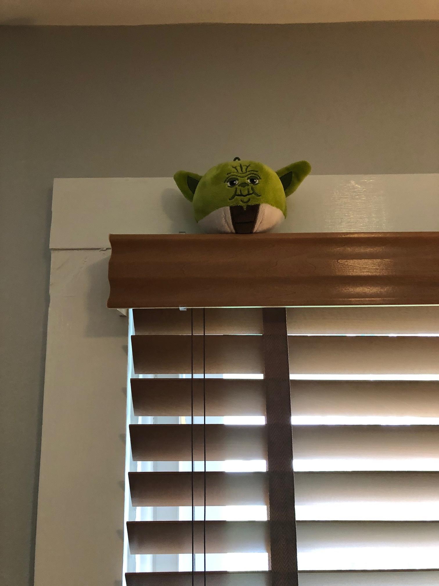 Yoda over a window