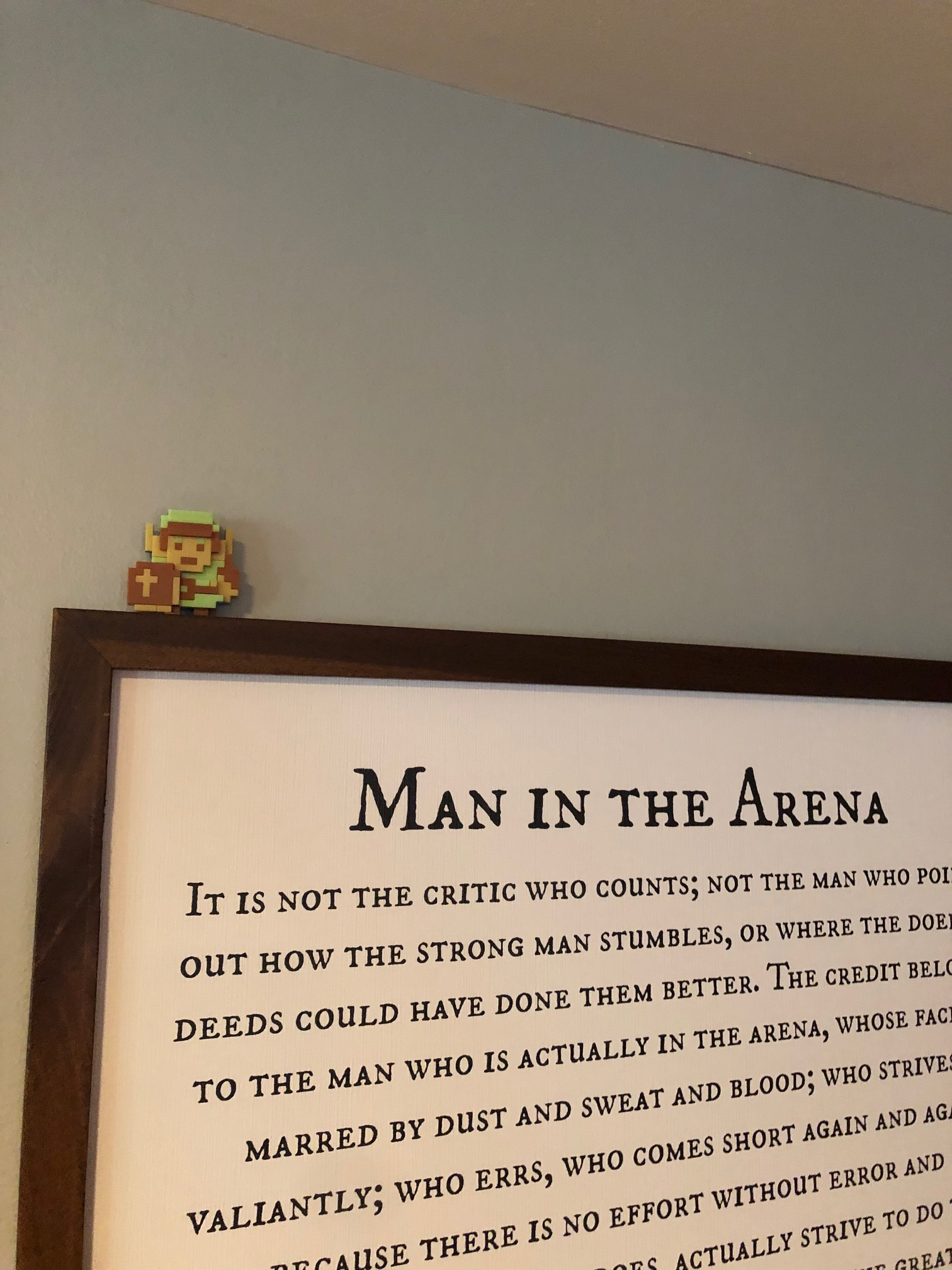 Link is the Man in the Arena