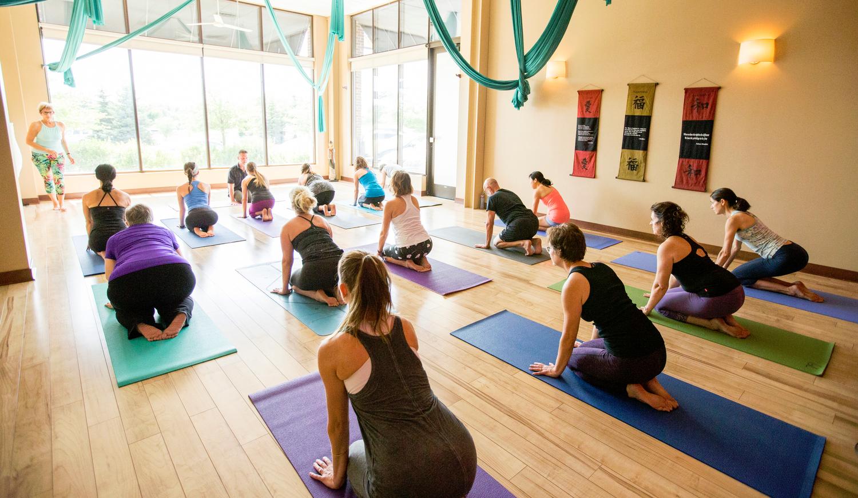 New To Green Lotus Yoga Green Lotus Yoga Healing Center