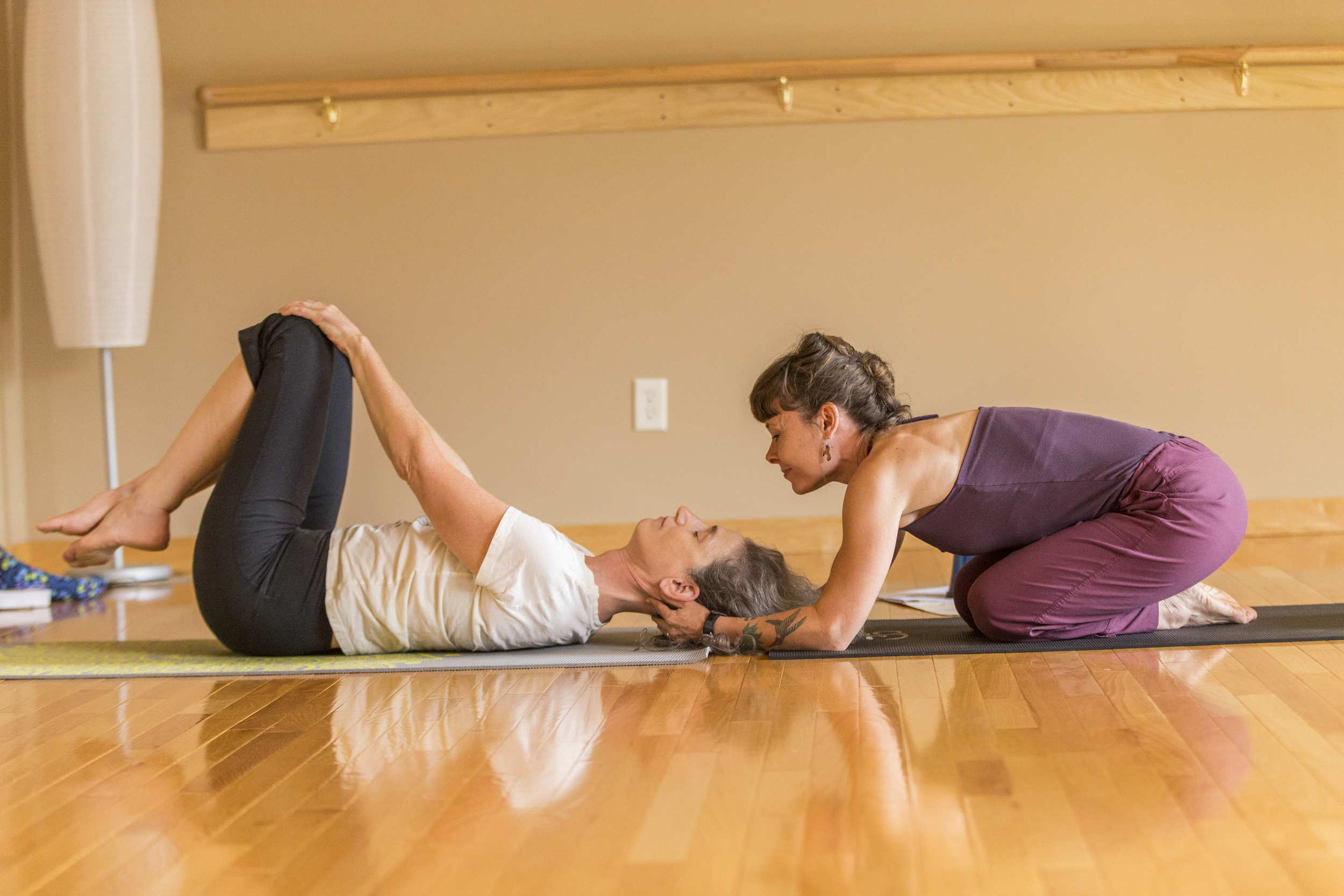 expert-private-yoga-instruction-twin-cities