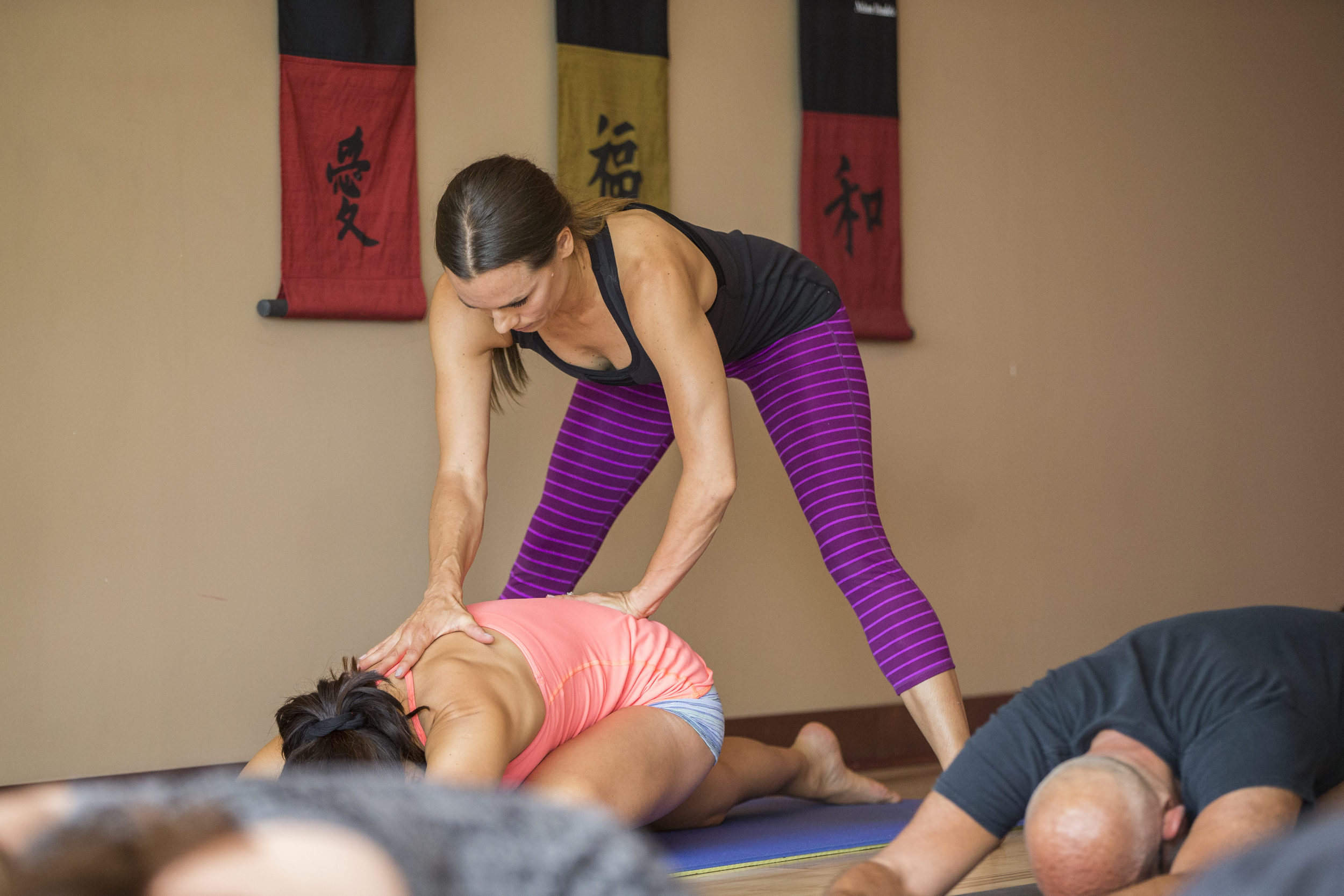 minnesota-yoga-training-twin-cities