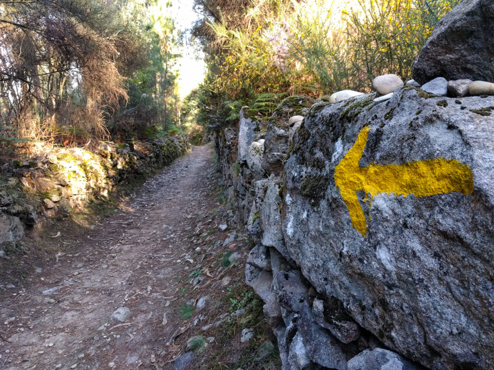 camino portugal rough trail.jpg