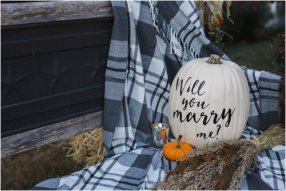 Erik & Jessica - Marriage Proposal - Kamp Weddings_0003.jpg