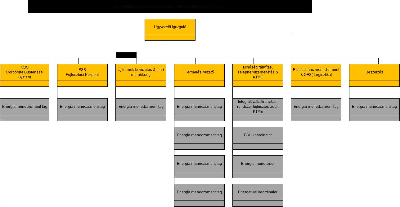 SEQ ábra \* ARABIC      1      . ábra: A Continental Automotive Kft. veszprémi üzemegységének organigramja