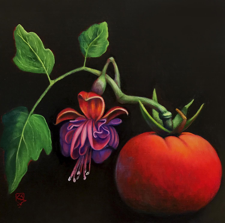 Fuchsia Tomato.jpg