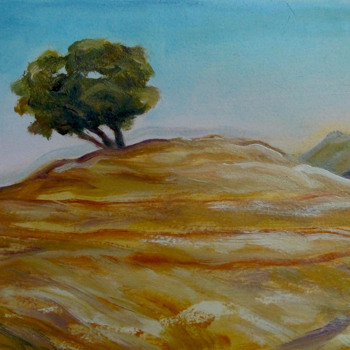 Barzani Mountains, 2010
