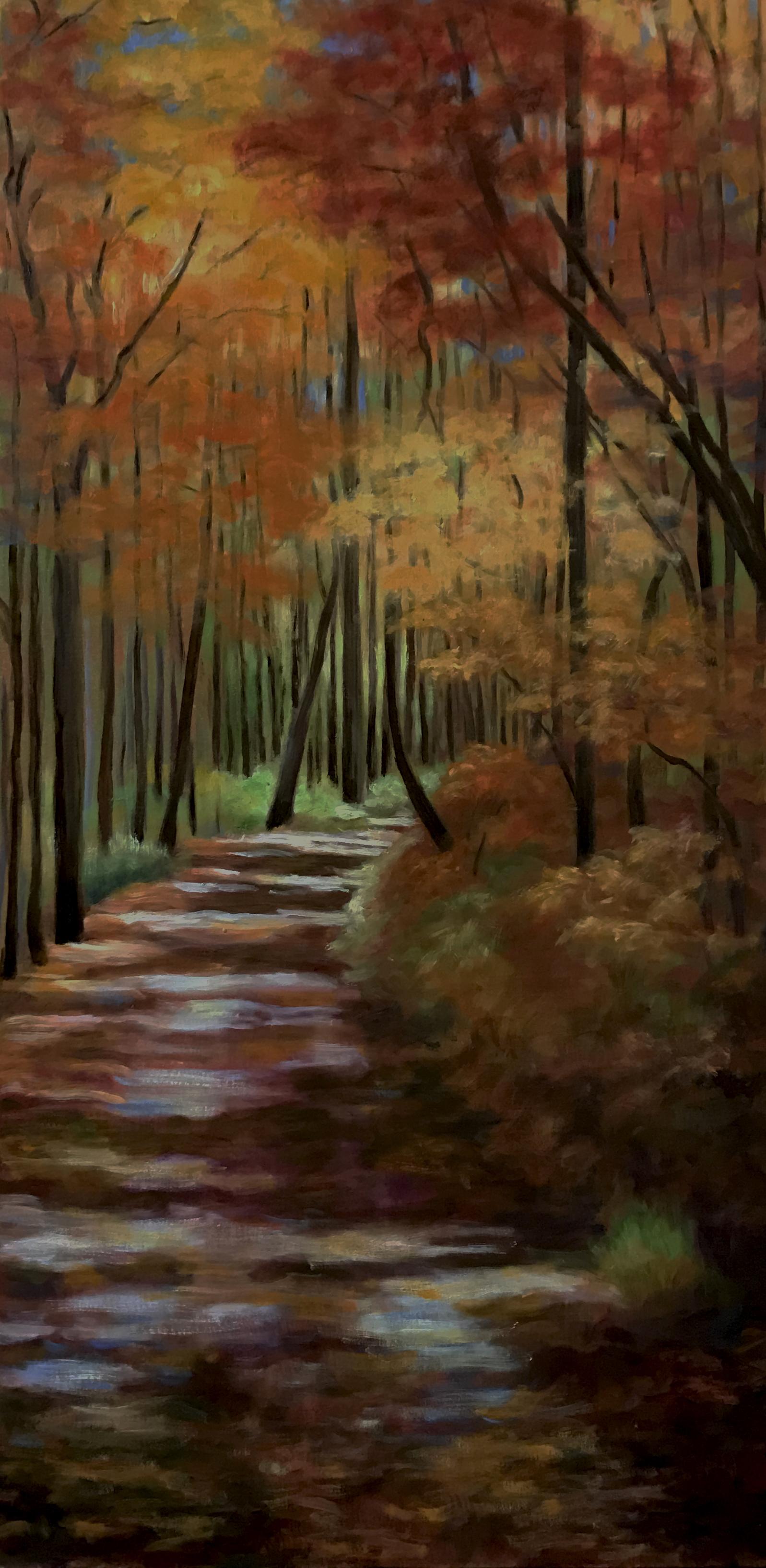 Wildcat Forest Path, Lake Burton GA, fall 2016