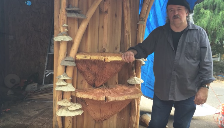 Mounted Wooden Chainsaw Carved Mushrooms