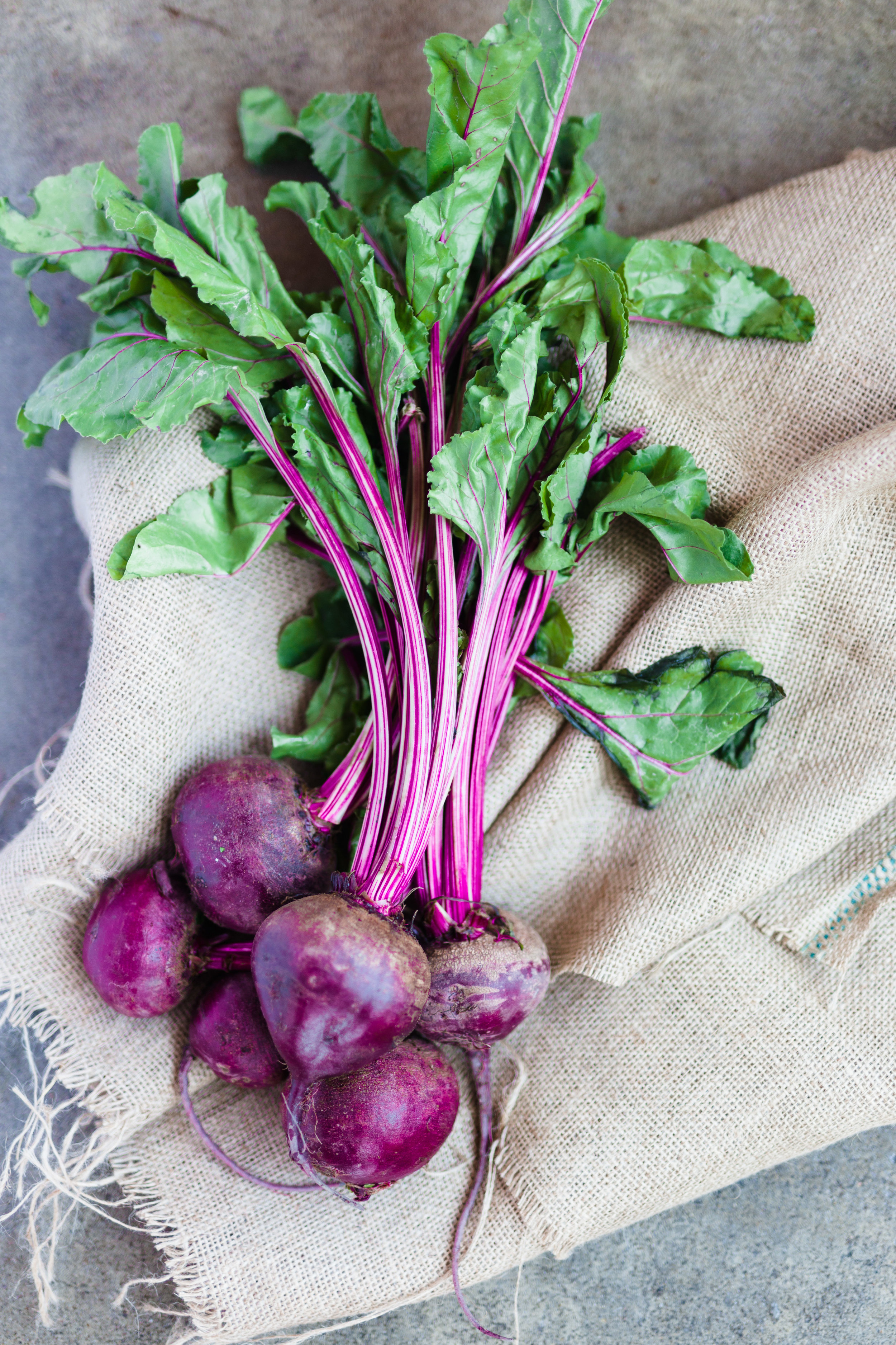 vivian howard a chefs life recipes beet kavass photographs by baxter miller