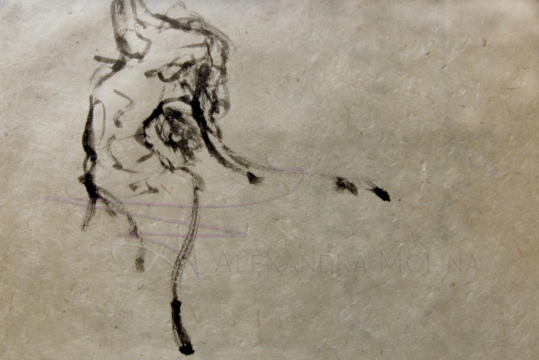 Calligraphic Dancer1 9x13.jpg