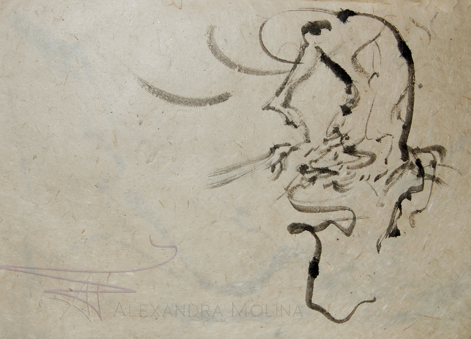 Calligraphic Dancer2 9x13.jpg