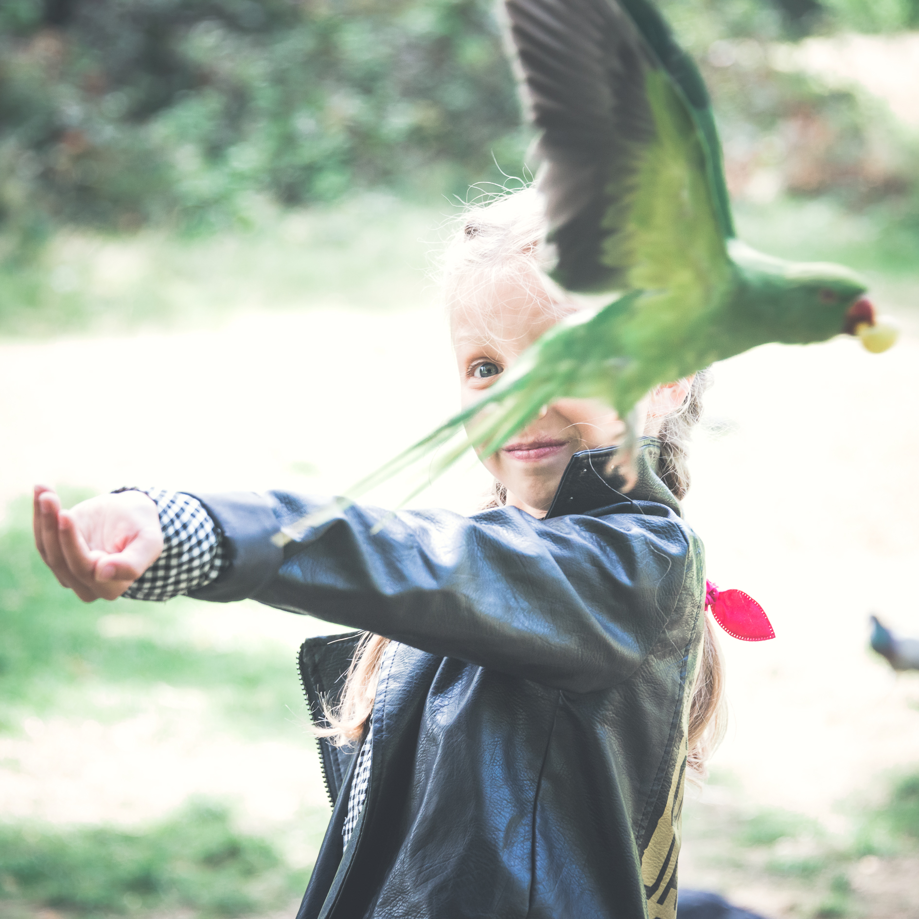 flying-bird-portrait-london-park