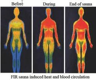 far infrared sauna induced heat and blood CIRCULATION in body