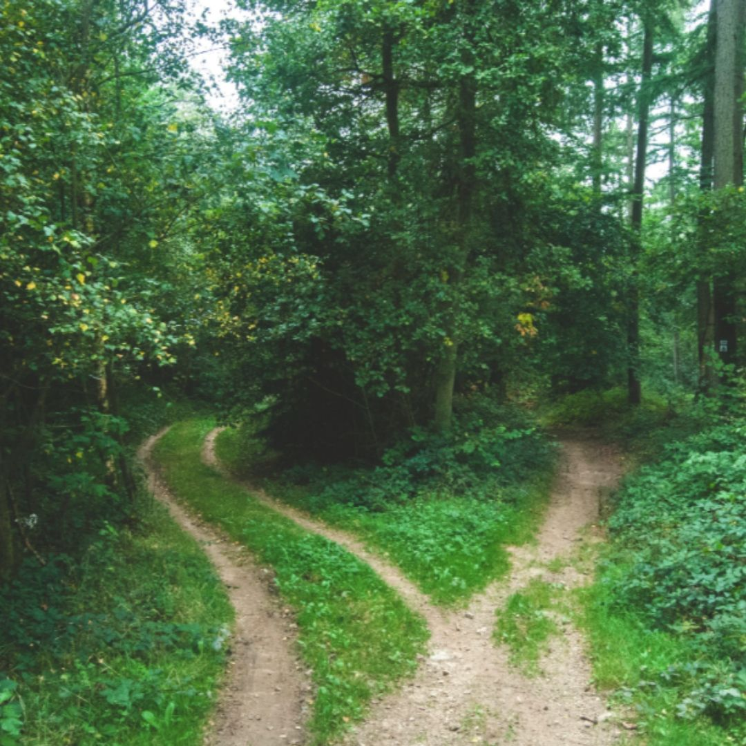 Traditional Vs. Alternative Paths To Mission