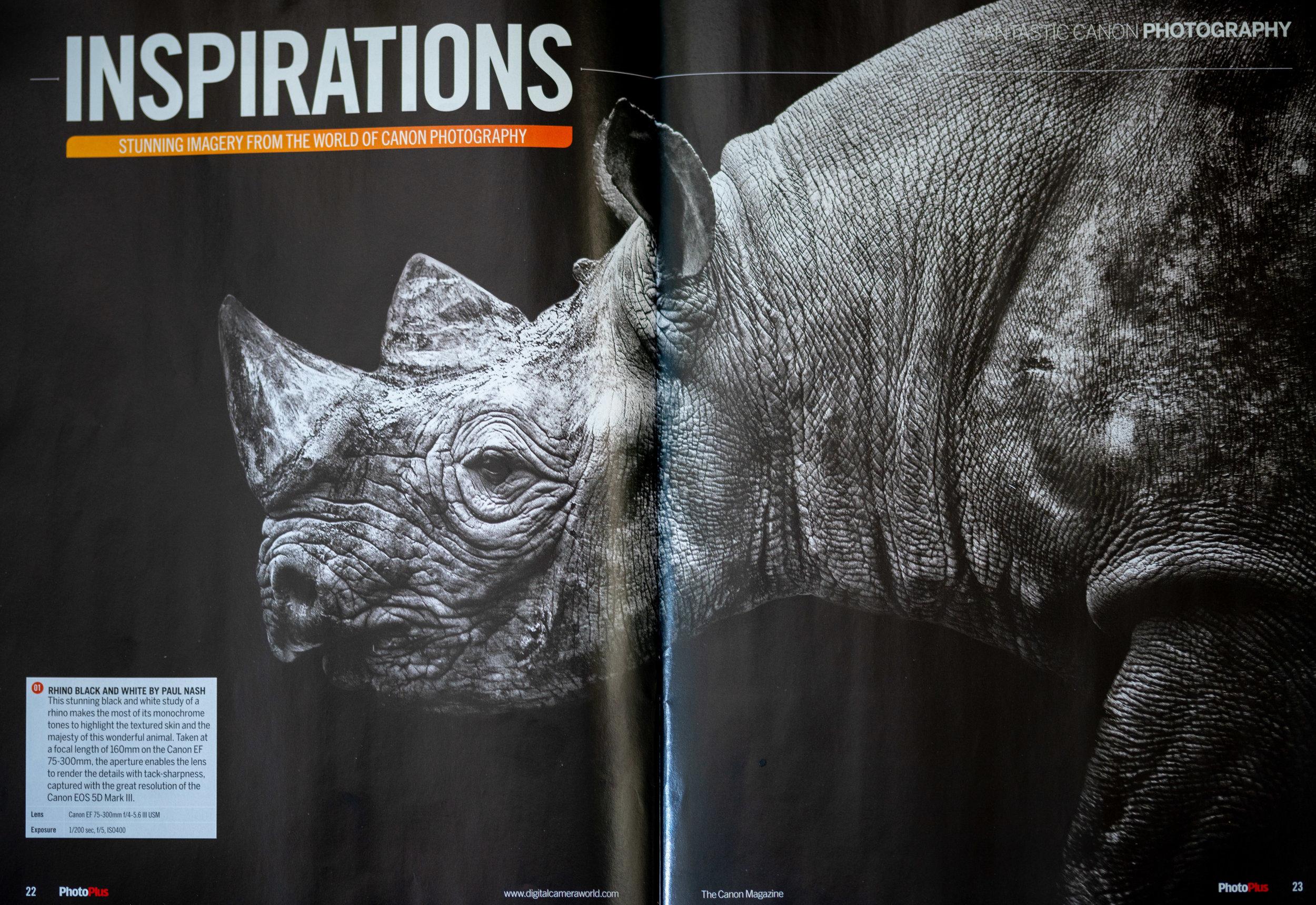 Rhino mag low.jpg