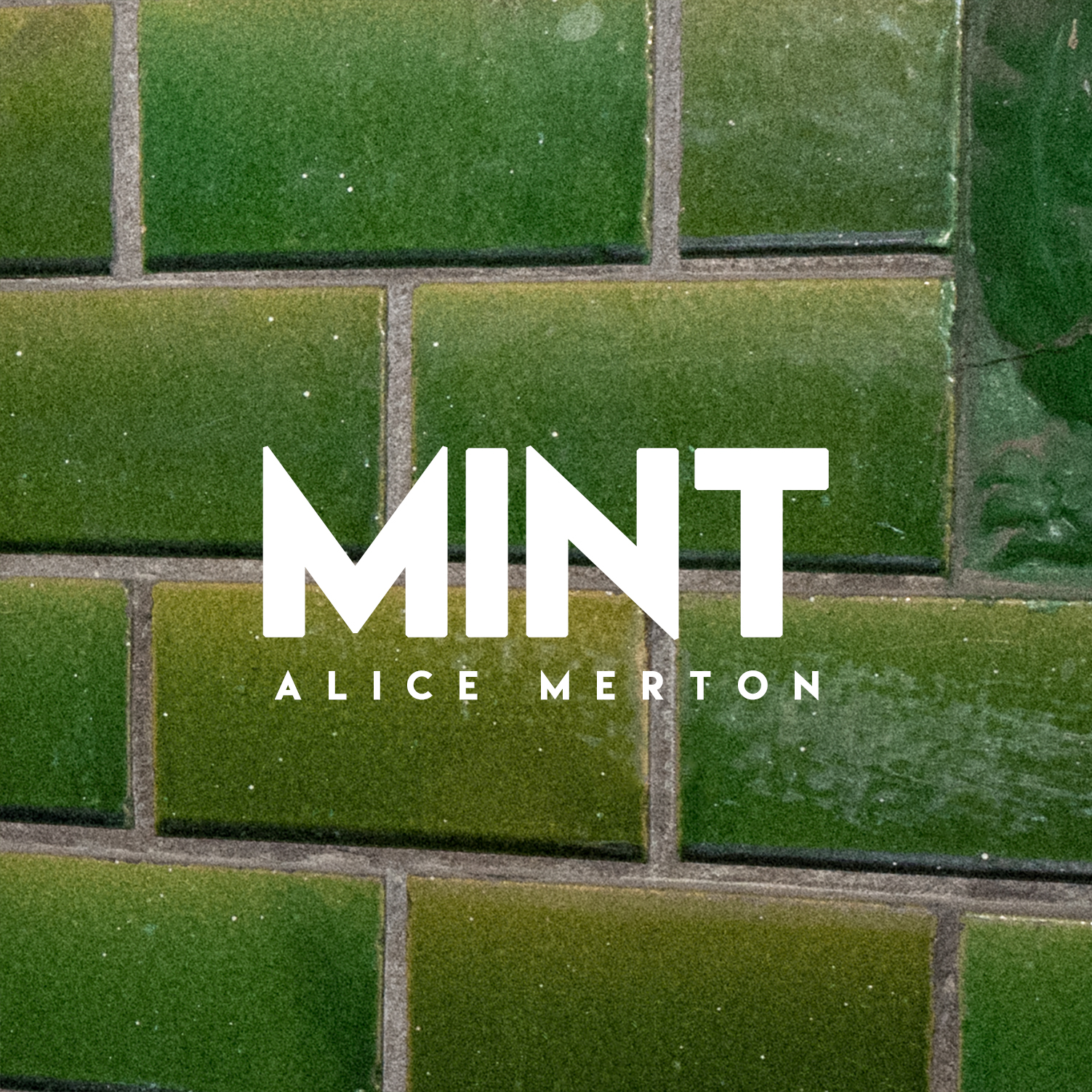 AliceMerton_MINT_CoverDummy.jpg