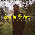 Head in the Trees Remix EP (2019)