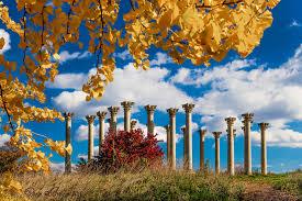 Fall display at the National Arboretum