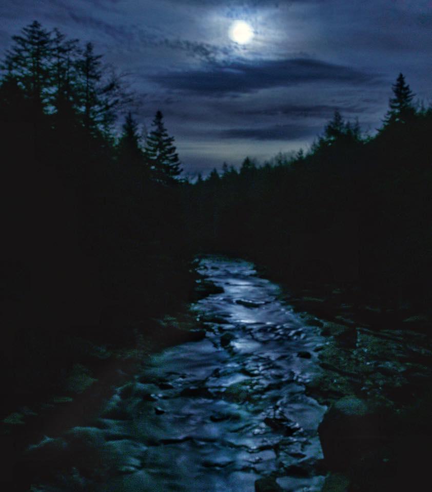 blackwater fall SP, WV, Vernon Patterson, at Canaan Valley Resort.jpg