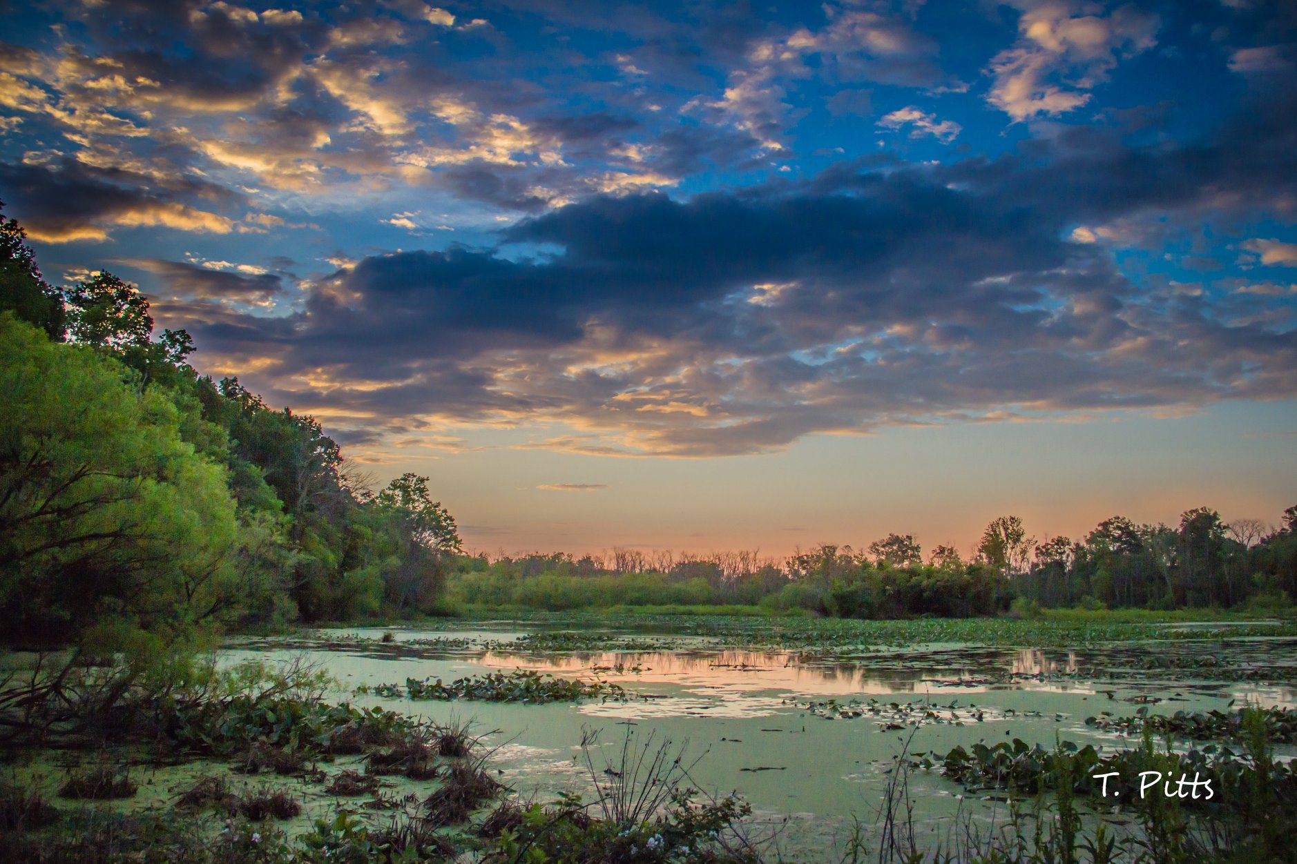 McKee Beshers, T. Pitts sunrise.jpg