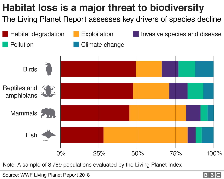 habitat loss.png