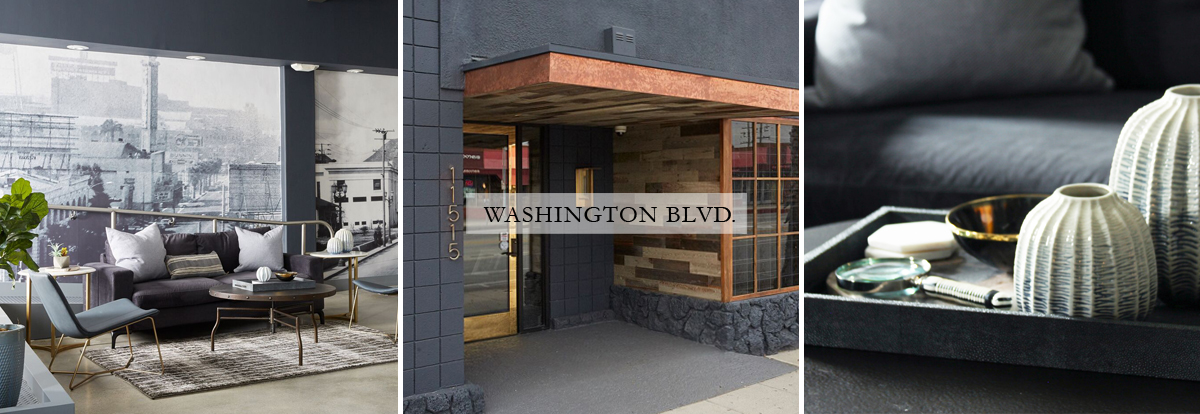 project_11_washington.jpg