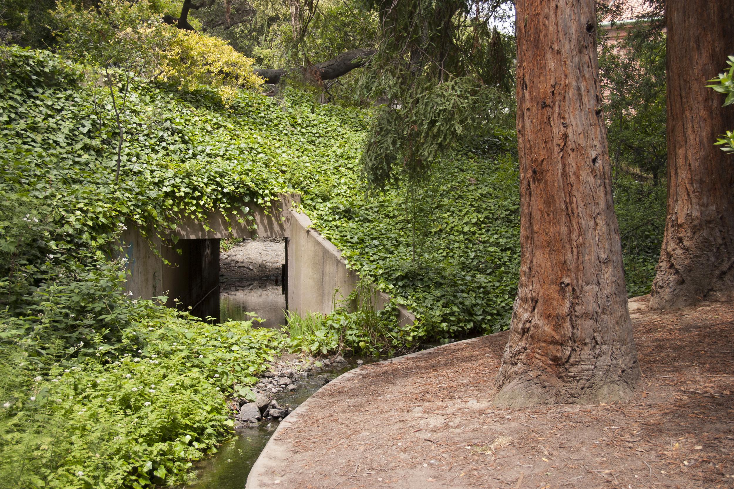 creek4.jpg