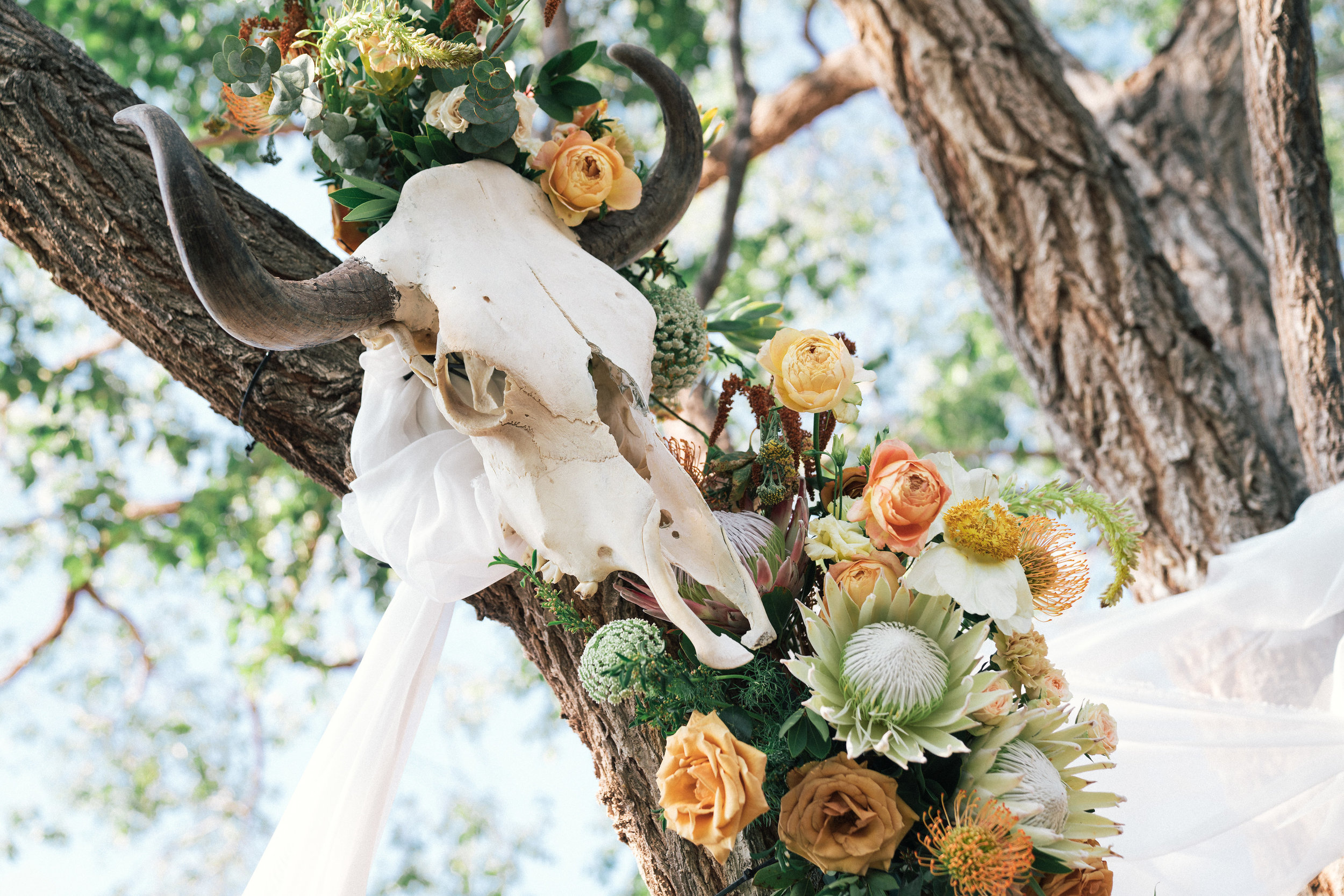 landry_lovelace_wedding_jbobephoto-312.jpg