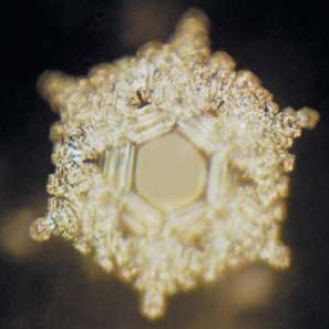 Water crystals formed after being exposed to words of love and gratitude