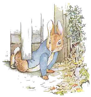Peter-Rabbit-4.jpg