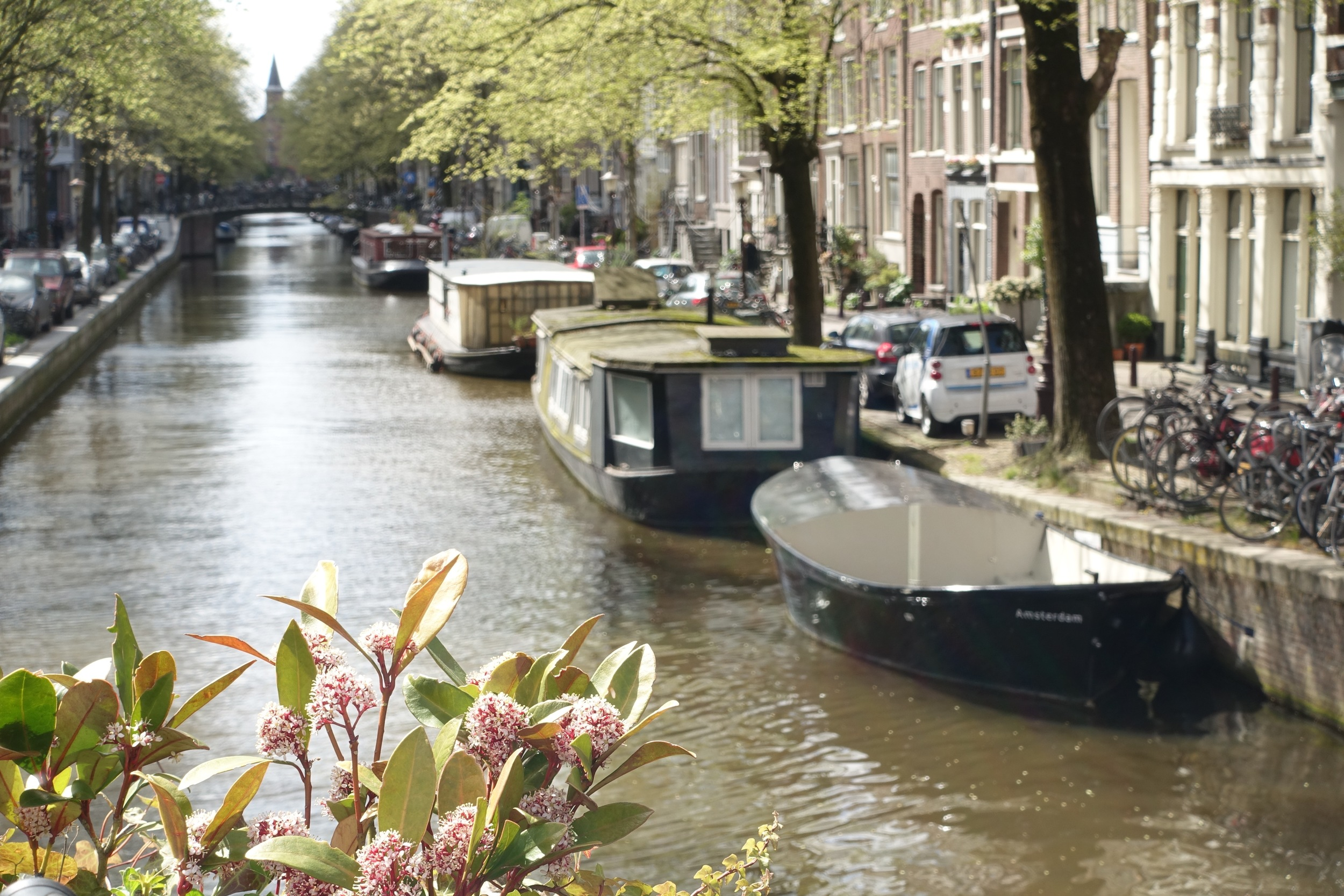 Along the Prinsengracht canal