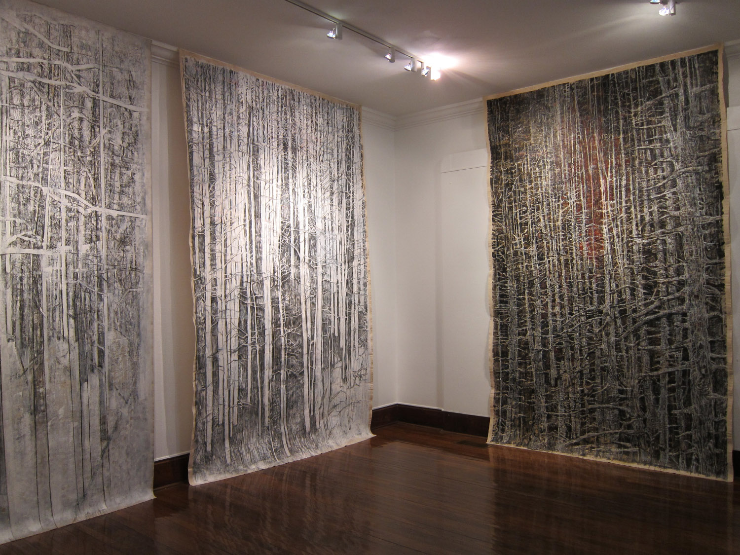 2ag(4)-Whiteout, Curtains, Snags, Curtains - each  133x83 in. mm on canvas- 2010, Beeville Art Museum.JPG