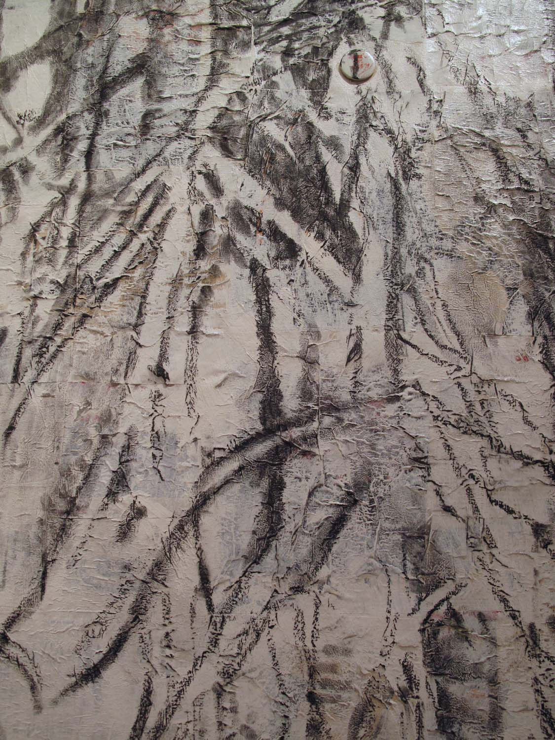 2ah(1)-Detail of Shrub, charcoal, gesso, collage on canvas.jpg