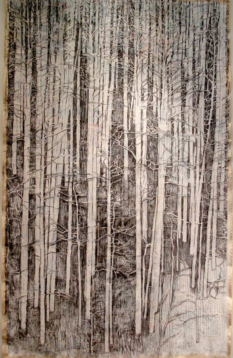 2ae(0)-Curtains-charcoal, gesso,  print media collage on unstretched canvas, 133x83 in. 2008.jpg