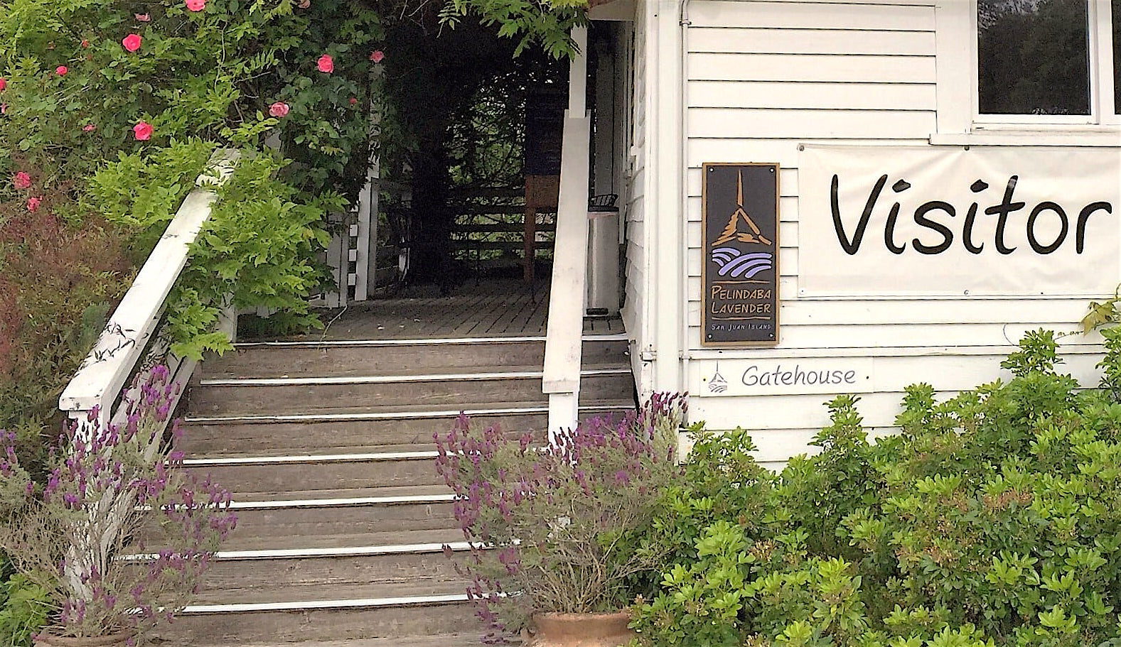 The Gatehouse Farm Store and Visitor Center at the Pelindaba Lavender Farm